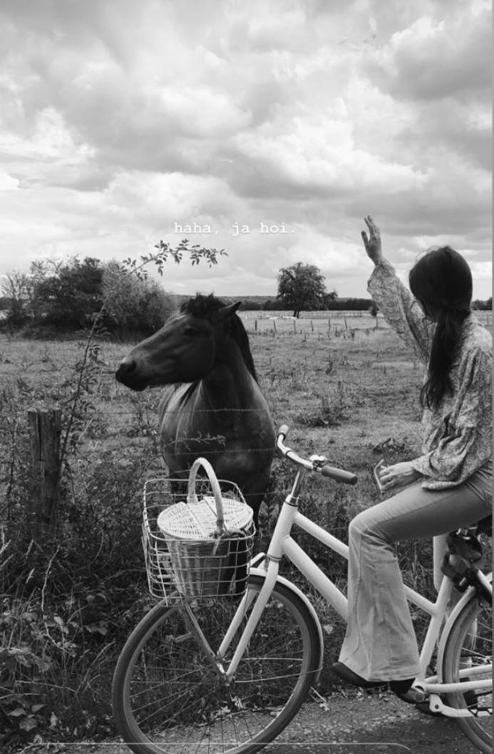 Classic_70s_basket_NOVEMBRE_France